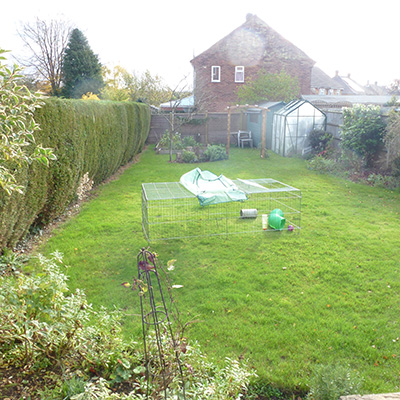 Amersham garden before the redesign