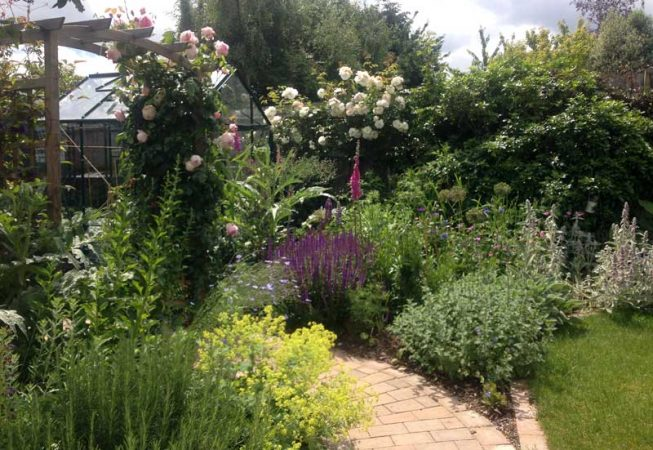 Amersham Garden one year after planting