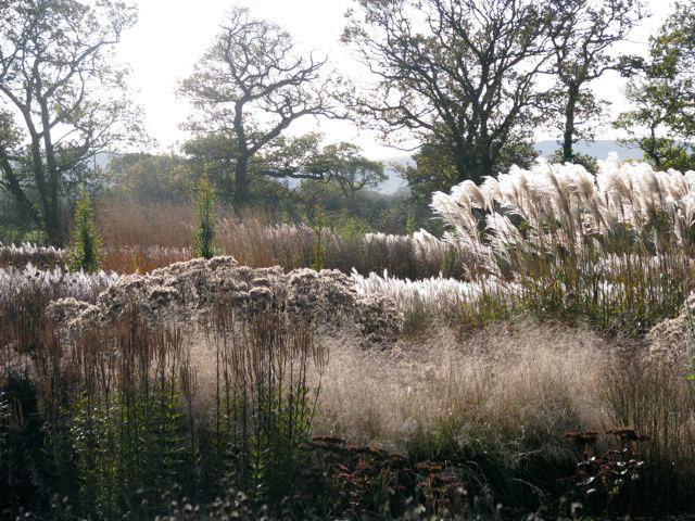 Sussex Prairie Garde in Winter